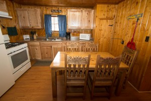 New Kitchen Cabin 4