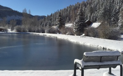 Winter Recap and Spring in Red River